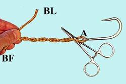 Les noeuds pour la pêche à la mouche... Clinch-forceps-2