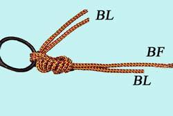 Les noeuds pour la pêche à la mouche... Dble-Clinch-3